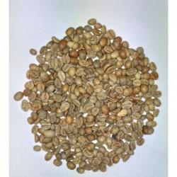 Rohkaffee - 100g Proben
